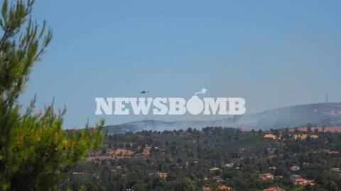 Δήμαρχος Μαραθώνα στο Newsbomb.gr για φωτιά στον Βαρνάβα: Έχουμε αναζωπύρωση - Κινδυνεύουν αγροικίες
