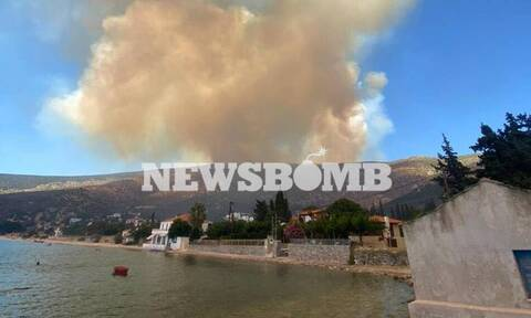 Φωτιά ΤΩΡΑ - LIVE BLOG: Σε πύρινο «κλοιό» Αττική και Εύβοια - Μάχη με τις φλόγες και τους ανέμους