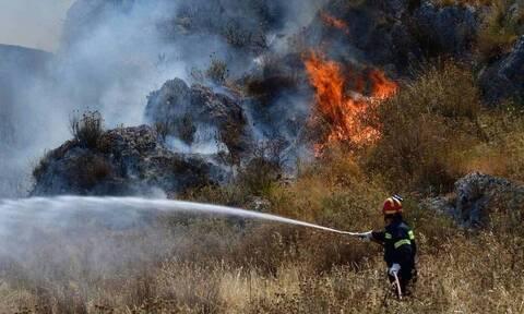 ΓΓΠΠ: Πολύ υψηλός κίνδυνος πυρκαγιάς (κατηγορία κινδύνου 4) αύριο για πέντε περιφέρειες της χώρας