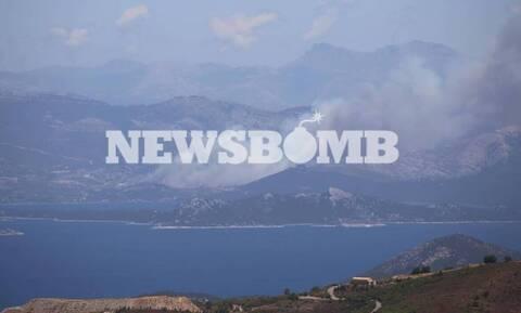 Φωτιά Εύβοια: Στάχτη 5.000 στρέμματα στα Nέα Στύρα – Οριοθετήθηκε η πυρκαγιά