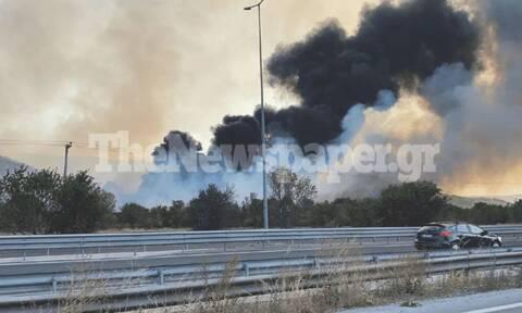 Σε εξέλιξη μεγάλη φωτιά έξω από τον Βόλο - Δύσκολη μάχη με τις φλόγες (vid)