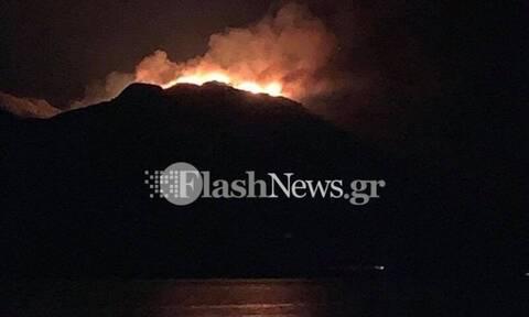 Φωτιά σε δύσβατη περιοχή στα Χανιά - Μεγάλη κινητοποίηση της Πυροσβεστικής (vids)