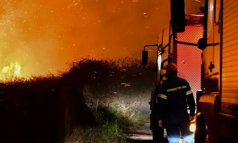 Φωτιά ΤΩΡΑ στη Μαγνησία: Υπό μερικό έλεγχο η πυρκαγιά στην περιοχή Σκαφίδες του δήμου Ρήγα Φεραίου