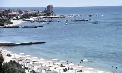 Χαλκιδική: Γέμισαν με μέδουσες οι παραλίες - Που οφείλεται το φαινόμενο