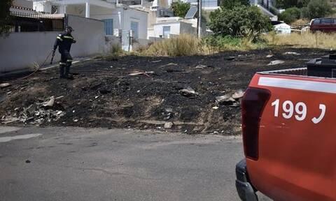 Φωτιά σε μονοκατοικία στο Χαλάνδρι – Κινητοποίηση της Πυροσβεστικής
