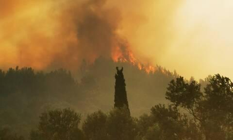 Φωτιά στη Σάμο: Ενισχύθηκαν οι πυροσβεστικές δυνάμεις - Εκκενώθηκαν δύο ξενοδοχεία (pics+vid)