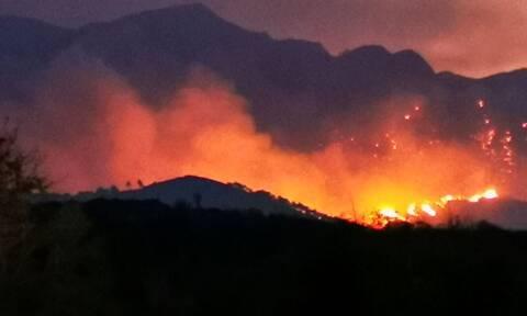 Φωτιά στη Σάμο: Ολονύχτια μάχη με τις φλόγες - Εκκενώθηκαν ξενοδοχεία και σπίτια στο Κοκκάρι (pics)