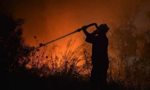 Φωτιά ΤΩΡΑ στη Σάμο: Στο μέτωπο της πυρκαγιάς ο Αρχηγός του Πυροσβεστικού Σώματος