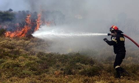 Φωτιά ΤΩΡΑ στον Βόλο: Στην περιοχή Περίβλεπτο - Δεν απειλούνται κατοικημένες περιοχές