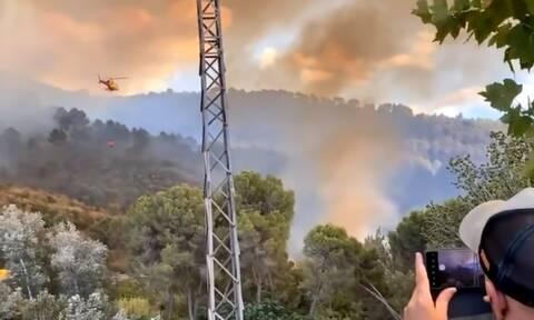Ισπανία: Φωτιά σε φυσικό πάρκο στην Καταλονία - Εκατοντάδες άνθρωποι εγκατέλειψαν τις εστίες τους
