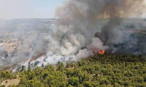 Πυροσβεστική: 53 δασικές πυρκαγιές το τελευταίο 24ωρο