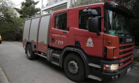 Βόλος: Υπό μερικό έλεγχο η φωτιά σε δασική έκταση στην περιοχή Περίβλεπτο