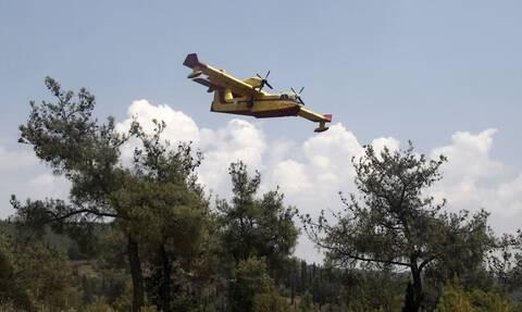 Πυροσβεστική: 55 δασικές πυρκαγιές εκδηλώθηκαν το τελευταίο 24ωρο σε όλη την Ελλάδα