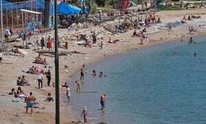 Карпавелос: Отдых на греческих островах только для привитых