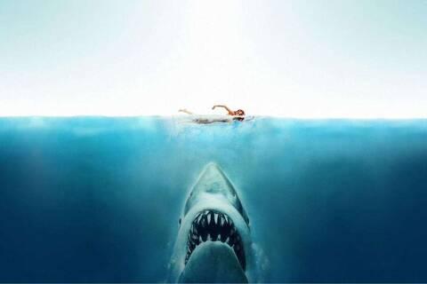 Πέντε ταινίες με καρχαρίες που θα στοιχειώσουν τις βουτιές σας