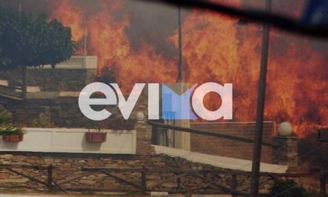 Φωτιά στην Κάρυστο: Οι φλόγες «έγλειψαν» σπίτια - Δραματικές στιγμές