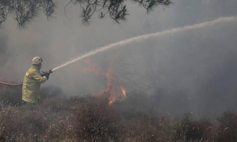 Φωτιά ΤΩΡΑ: Μεγάλη πυρκαγιά στην Κρήτη