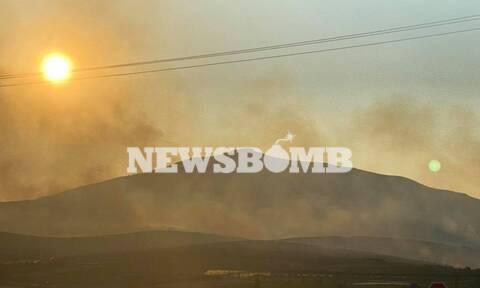 Φωτιά τώρα: Πύρινος εφιάλτης στο Καλέντζι Κορινθίας-Σκληρή μάχη με τις φλόγες, ανεξέλεγκτο το μέτωπο