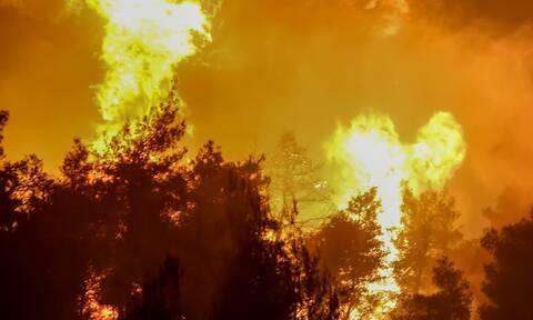 Φωτιά τώρα: Δύσκολη νύχτα στην Κορινθία- Μαίνεται ανεξέλεγκτο το μέτωπο στο Καλέντζι