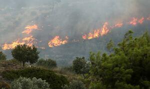 Φωτιά ΤΩΡΑ: Μεγάλη πυρκαγιά στην Κορινθία - Έκτακτη προειδοποίηση από το 112