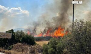 Φωτιά στο Ναύπλιο - Συναγερμός στην Πυροσβεστική (pics)