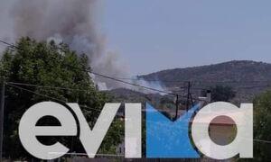 Φωτιά ΤΩΡΑ στη Χαλκίδα