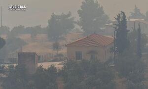 Φωτιά στην Αργολίδα: Δραματικές στιγμές στη Γκάτζια - Εκκενώθηκε το χωριό