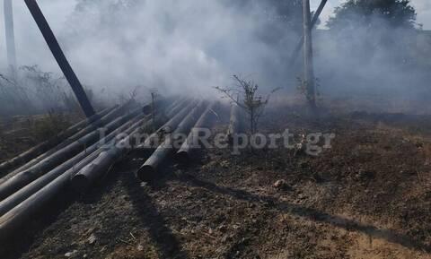 Λαμία: Πρόλαβαν την πυρκαγιά κοντά στη Μονή Γοργοϋπηκόου