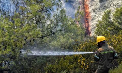 ΓΓΠΠ φωτιά περιφέρειες