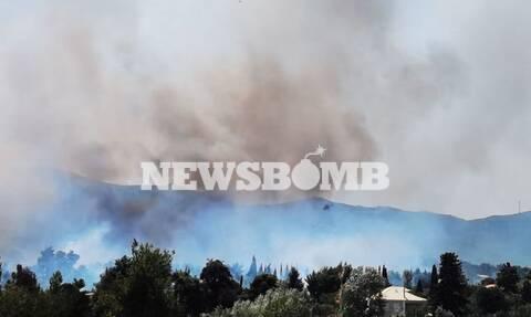 Φωτιά στη Σταμάτα: Οι πρώτες εικόνες από την πυρκαγιά που καίει κοντά σε σπίτια