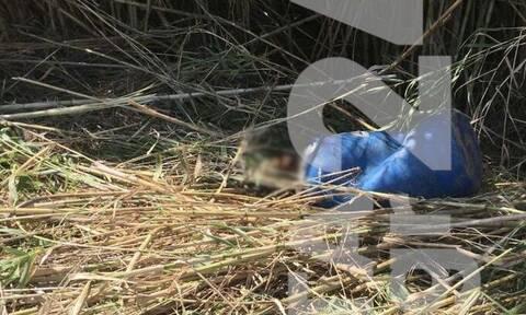 Θρίλερ στο Ρέθυμνο: Εντοπίστηκαν ανθρώπινα οστά σε βαρέλι πεταμένο στο ποτάμι