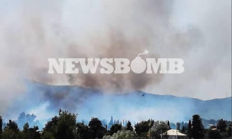 Из-за сильного пожара эвакуируют жителей северных пригородов Афин