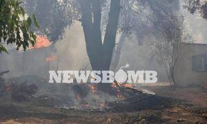 Φωτιά ΤΩΡΑ - Αντιδήμαρχος Διονύσου στο  Newsbomb.gr: Είκοσι σπίτια έχουν υποστεί μεγάλες ζημιές