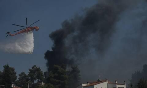 ΣΥΡΙΖΑ: Παρά τις προειδοποιήσεις για τον καύσωνα, το επιτελικό κράτος Μητσοτάκη κοιμόταν και πάλι