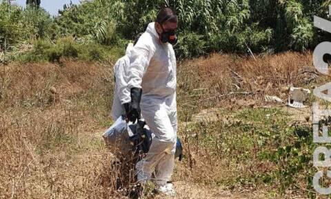Θρίλερ με το μουμιοποιημένο κεφάλι στην Κρήτη - Σήμερα οι απαντήσεις του Ιατροδικαστή