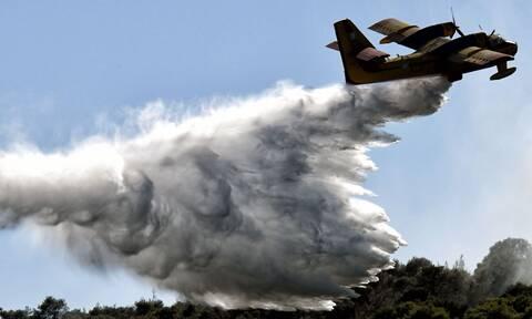 Φωτιά ΤΩΡΑ στη Δροσιά Αχαΐας