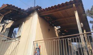 Φωτιά ΤΩΡΑ - ΠεριφερειάρχηςΑχαΐας στο Newsbomb: Δραματική κατάσταση - Καίγονται σπίτια
