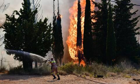 Φωτιά ΤΩΡΑ - Αχαΐα: Τραυματίας πυροσβέστης στη μάχη με τις φλόγες
