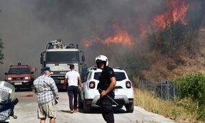 Φωτιά Αχαΐα: Τέσσερις τραυματίες στη μεγάλη πυρκαγια -Ο Κικίλιας έθεσε σε μέγιστη ετοιμότητα το ΕΚΑΒ