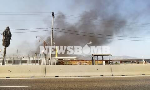 Φωτιά ΤΩΡΑ: Μεγάλη πυρκαγιά στον Ασπρόπυργο - Ρεπορτάζ Newsbomb.gr