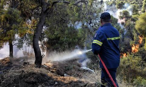 φωτιά Πλαγιάρι Θεσσαλονίκη πυροσβεστική