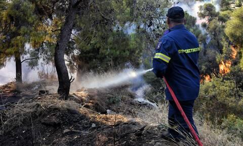 Φωτιά ΤΩΡΑ στην Βόνιτσα - Καίει δασική έκταση