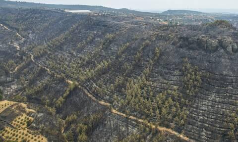 Σκληρή μάχη με τις πυρκαγιές στην Τουρκία: Υπό έλεγχο οι περισσότερες φωτιές