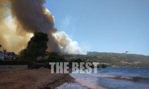 Φωτιά στην Αχαΐα: Απομακρύνουν κόσμο από παραλίες και beach bar -Μήνυμα του 112: Φύγετε προς Αίγιο