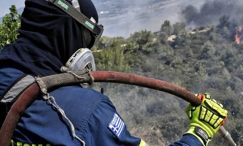 Φωτιά ΤΩΡΑ στο Δορούφι της Αργολίδας - Καίει αγροτοδασική έκταση