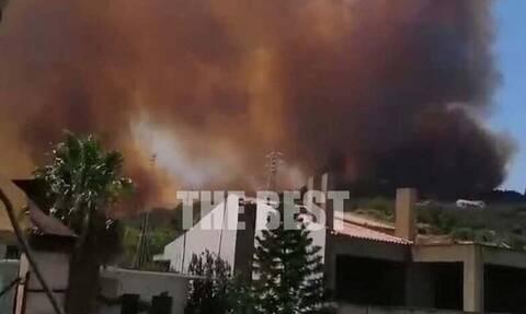 Πέτσας στο Newsbomb.gr για τη φωτιά στην Αχαΐα: Δύσκολη η κατάσταση - Θα δοθεί τεράστια μάχη