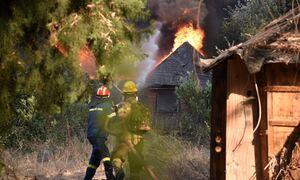 Φωτιά Αχαΐα - Ρεπορτάζ Newsbomb.gr: 5 άτομα στο νοσοκομείο - Κάηκαν πάνω από 20 σπίτια στη Ζήρια
