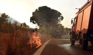 Φωτιά Αχαΐα: Διακοπή κυκλοφορίας στην Ολυμπία οδό - Μάχη με τις φλόγες στη σήραγγα Παναγοπούλα