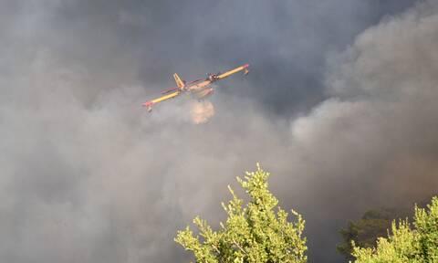 Φωτιά στη Μύκονο: Κάηκαν μηχανές - Πλησίασαν τις βίλες οι φλόγες
