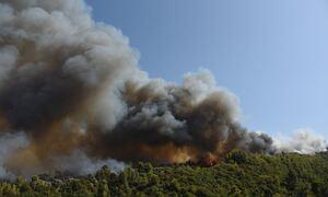 Φωτιά στην Αχαΐα: Μαίνεται το πύρινο μέτωπο - Κάηκαν σπίτια, 16 άτομα τραυματίστηκαν